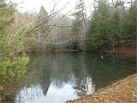 Beautiful unique tract of land with a large serene pond