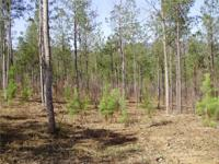 5 Acres near Murphy, NC about 15 miles from Blue Ridge,