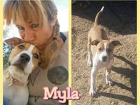 Meet Myla She is a spunky little pup. She is not a