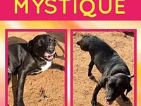 Mystique's story Mystique, sister to Angel, Misty and