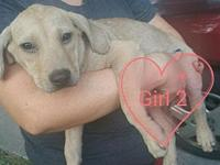 Namorita (NY-Holly)'s story Please contact Holly at