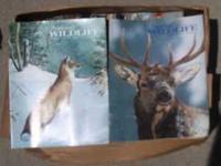 These National Wildlife Magazines are from the 1980's.