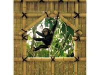 Monkeying around is allowed! This fun mural features a