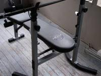 fresh adjustable weight bench with 100lbs weight and
