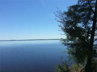 Wow, 2 acres of woods, 129ft of water frontage, and