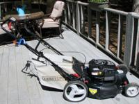Selling do to back injury. 675 Series Briggs & Stratton