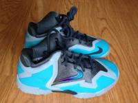 NEW Nike Kids Lebron James XI shoes , size 12 - Pics,