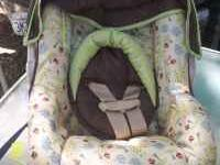 We have a new Costco Baby Car Seat and Stroller for