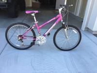 I'm selling my shiny new pretty pink ladies ROADMASTER