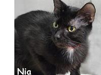 Nia's story Nia is a very sweet and outgoing gal that