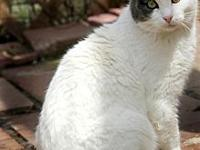 Noah's story Born 2007 - Noah is a lovable and friendly