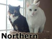 Northern and Charmin  Sweet sisters.  Northern and