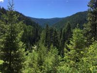 Hunter's Paradise! This 50+/- acres is located in the