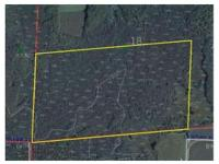 270 Wooded acres in Langlade County right near Antigo.