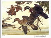I am liquidating a lifetime of Duck Stamp prints in the