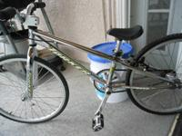 I have a traditional 1999 Torker TR.5 mini bmx race