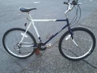 Old School 1986 Skyway Lamurian mountain bike. A rare