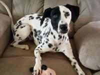 Olga is 12 months old .  She is very petite for a