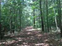 190 Acre Deer Haven! Located roughly 12 miles N of