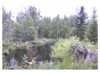 This property is located in northern Presque Isle