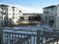 This One Ludington Place Condo Unit 25 is stunning! The