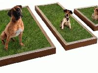 Description dog POTTY BOX & FRESH NATURAL GRASS / SOD
