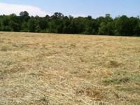Rye grass and orchard grass mixed hay. Weed free and