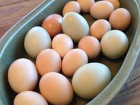 Organic, non-GMO, Farm Fresh Eggs, assorted colors