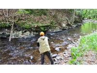 SALMON FISHING PROPERTY on TROUT BROOK: 34.76 acres