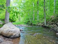 Use 622 acre Trout Brook State Forest and 2700' of