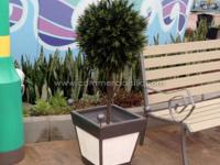 A leading industry brand of artificial plants that