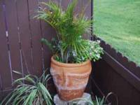 2 BEAUTIFUL OUT DOOR PLANTERS $50.00 EACH EXTRA LARGE