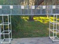 This is the outside breeding cage we built to protect