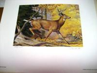 Pennsylvania Conservation Stamp Prints (3) 1981 the 1st