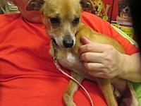 Pablo's story Pablo is in a home with multiple other