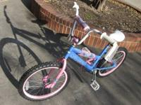For sale we have a Pacific Gleam Bike  Light Blue and