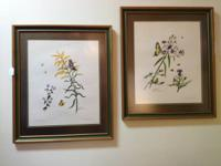 Two Beautiful Botanical Prints Framed and Double Matted