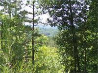 Narrows Road East Tract # 08-013. 73.5+/- Acres in