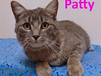 Patty's story Meet Patty. She may seem shy at first but