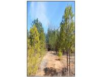 9.7 Acres that is close to everything. This property is