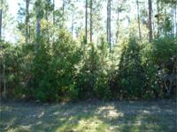 7 ACRES HEAVILY WOODED WITH 2 ROAD FRONT LOTS, WATER