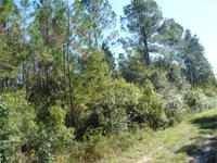 833 ACRES FRONTING HWY 90 IN BUFFER ZONE. MATURE PINES