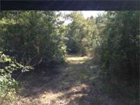 Exceptionally great searching tract near the Jackson,