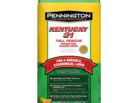 Pennington tall fescue penkoted grass seed builds