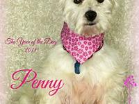 Penny's story Penny loves her long slow walks. She is