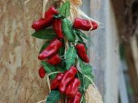 I am selling 2 hanging pepper decorations for you home.