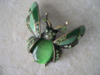 This stylish jeweled pest brooch pin has actually
