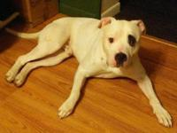Petey's story You can fill out an adoption application