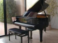 Petrof 58 grand piano with Renner action and QRS player