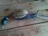Pheasant decoy for training dogs. Call me if